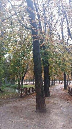 Parque del Retiro: Otoño