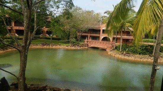 Park Hyatt Goa Resort and Spa: View from my Rooms Balcony
