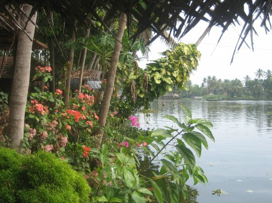 Malayalam Lake Resort Homestay: Lovely garden by the water