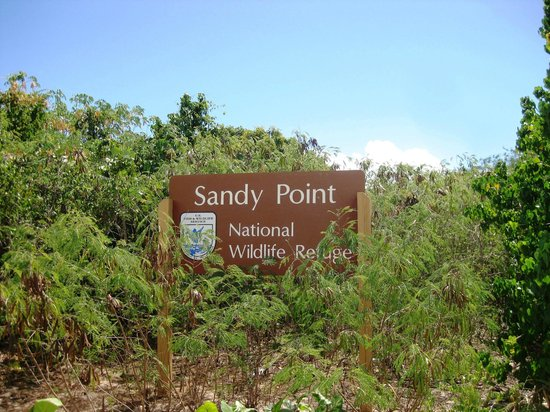 Sandy Point National Wildlife Refuge : Sandy Point