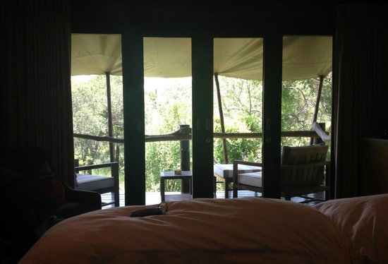 Kapama Buffalo Camp: View from the Room