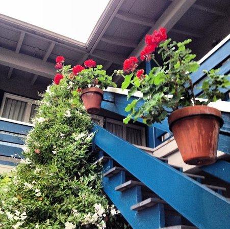 Carmel Wayfarer Inn : stairs
