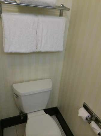 Fairfield Inn & Suites Cleveland Avon : Toilet area