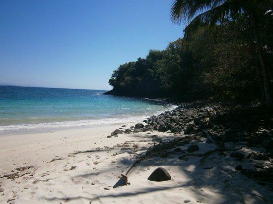 Hotel Bocas del Mar: isla