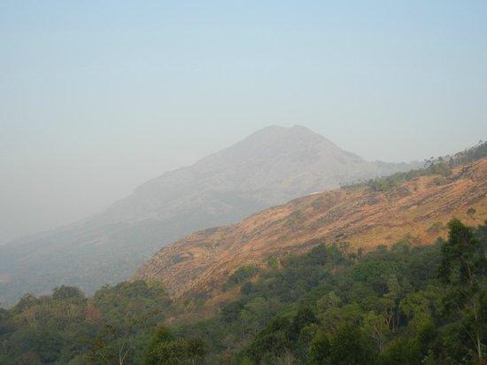 The Wind Munnar: Beautiful Munnar