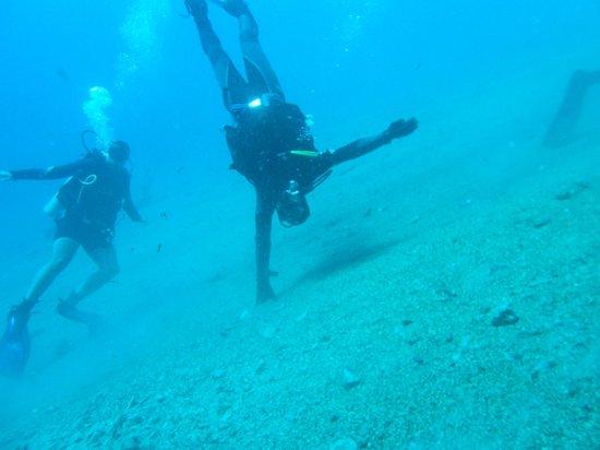 Bedouin Divers Dahab: Lighthouse Dive