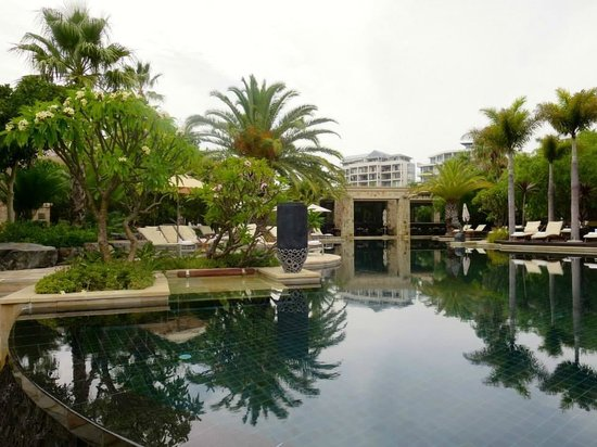 One&Only Cape Town : Cool pool