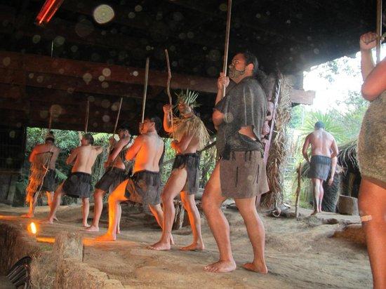 Mitai Maori Village: Warriors