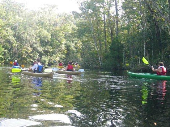 Amelia Island Kayak Excursions: Enjoying A Family Outing