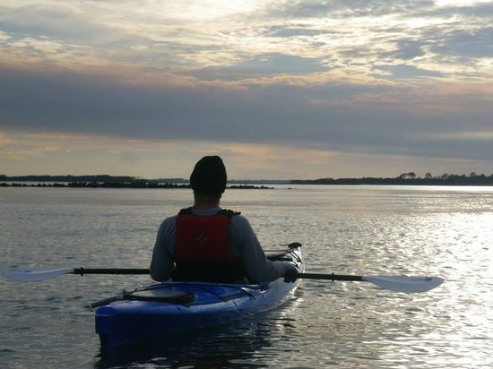 Amelia Island Kayak Excursions: An Amelia River View