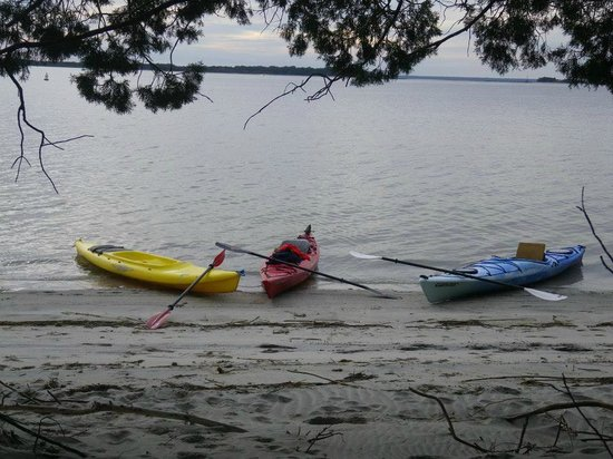 Amelia Island Kayak Excursions: Island View