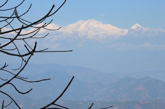 Sinclairs Darjeeling: View from our room