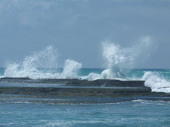 De Hoop Collection Nature Reserve: Indian Ocean
