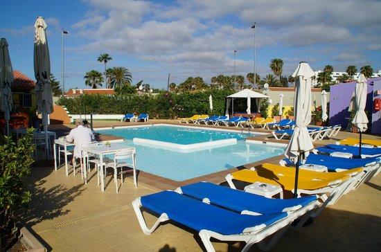 Tropical La Zona: Poolbereich
