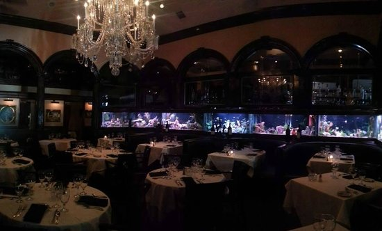 Arthur's Restaurant: Fish Tanks