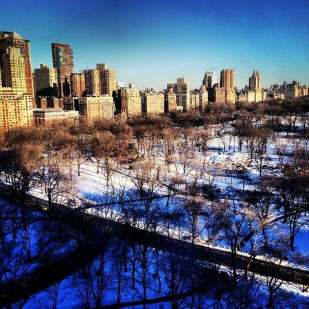 JW Marriott Essex House New York: Central Park View!