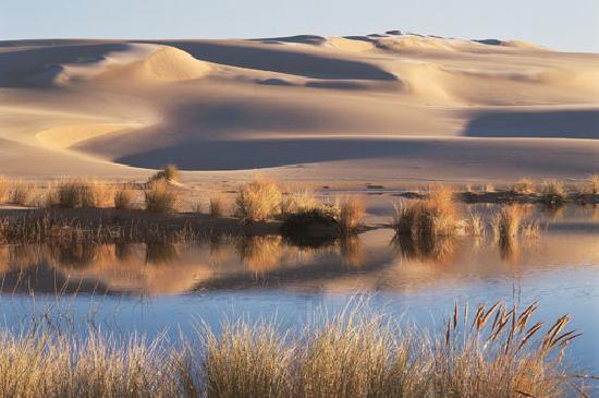 Sand Dunes Florence Oregon