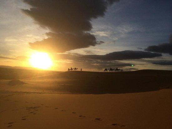 Auberge La Source: Unsere Tour auf denKamelen in den Sonnenuntergang