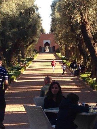 La Mamounia Marrakech : terraco