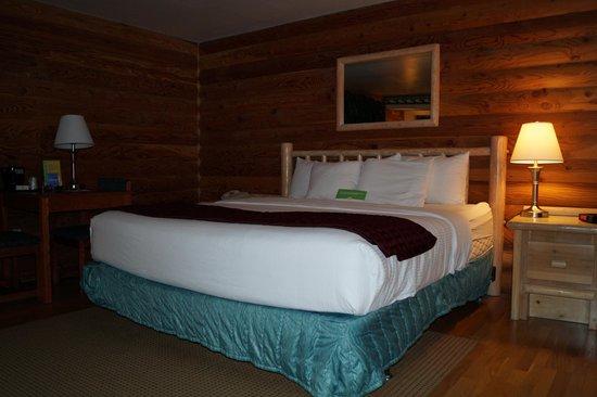 La Quinta Inn Albany: King room
