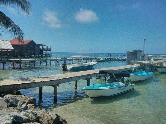 Splash Inn Dive Resort : El muelle de donde salen los buceos de Splash Inn Dive