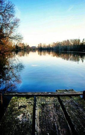 York Lakeside Lodges: Lakeside