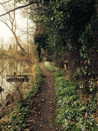 York Lakeside Lodges: Walk around lake
