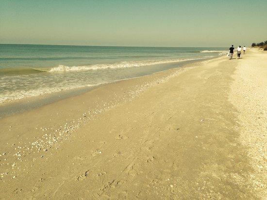 Island Inn Beach