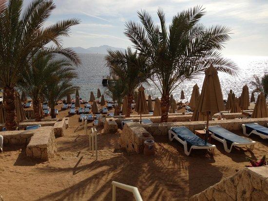 Xperience Sea Breeze Resort: Beach area