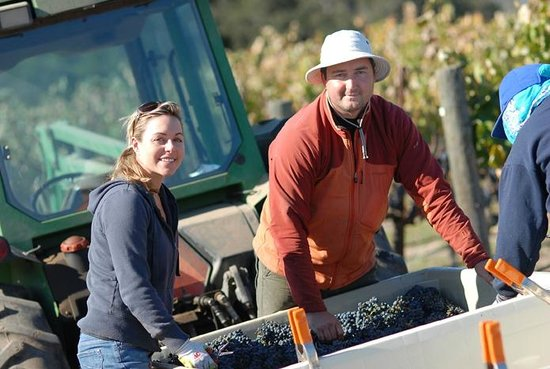 Larner Vineyard & Winery Tasting Room: Winemaker Michael Larner and his wife Christina