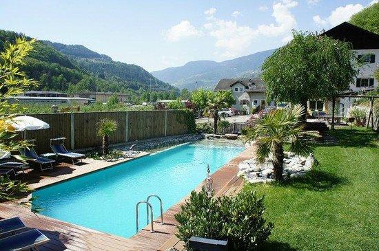 Hotel & Appartements Spitalerhof : Poolbereich mit Liegewiese
