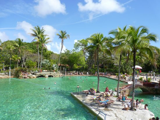 Miami Tour Company : Venetian Pool