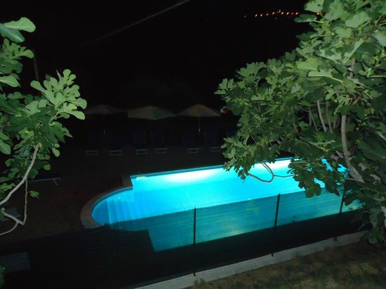 Agriturismo L'Uliveto : La piscina