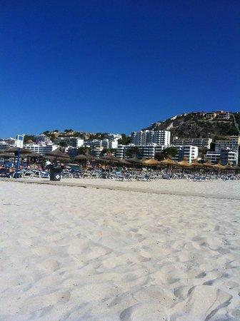 Zafiro Rey don Jaime : Santa ponsa beach