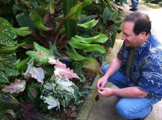 Marie Selby Botanical Gardens: Amazing plants
