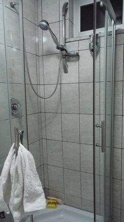 Ag Palace Hotel: there is a shower stall!