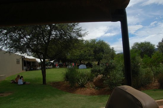 Legend Golf and Safari Resort: Lawn everywhere