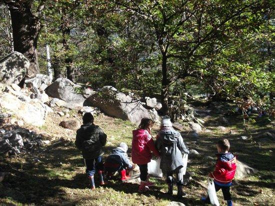 Agriturismo Cascina Barbassa: fattoria didattica passeggiata nel bosco