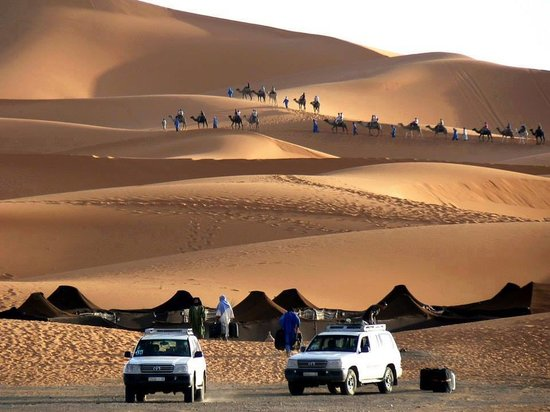 Desert Guide Private Day Tours