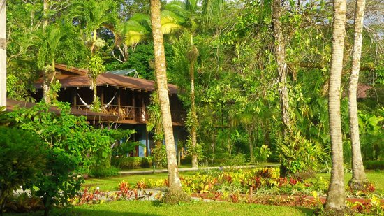 Tortuga Lodge & Gardens: A veiw of our room