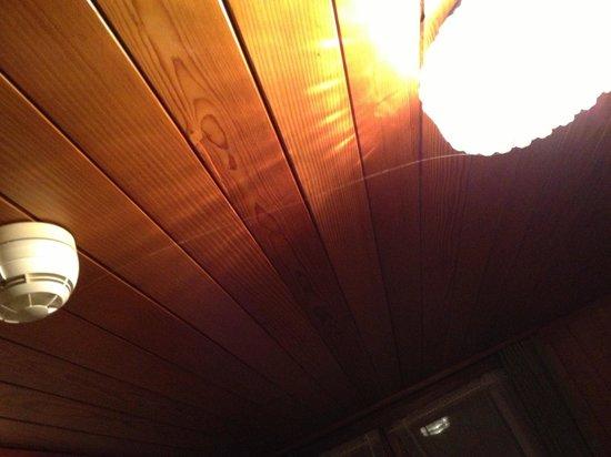 Hotel Sternen Worb: Grosse Spinnwebennetze von 2 Meter sichtbar