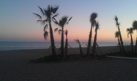 Chiringuito Arroyo : beach view
