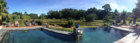 Lily Pond Country Lodge : The pool and lily pond beyond it