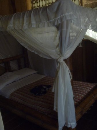 Siona Lodge: Our room, mosquito nets provided