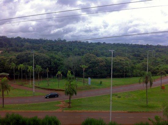 Grand Crucero Iguazu Hotel : Vista