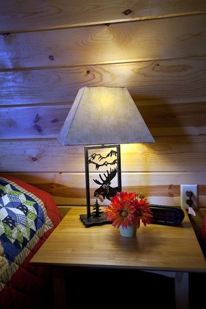 Mountain View Lodge & Cabins : Cozy Rooms