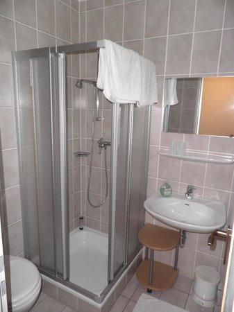 Gastehaus Sonneck: Dusche / WC