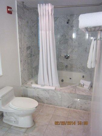 Essex House : shower