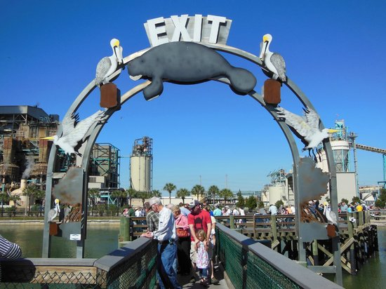Tampa Electric Manatee Viewing Center: Exit viewing area