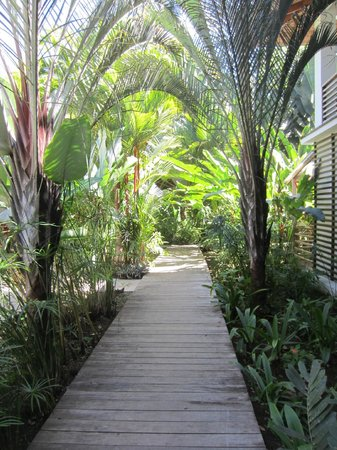 Le Cameleon Boutique Hotel: Beautiful grounds
